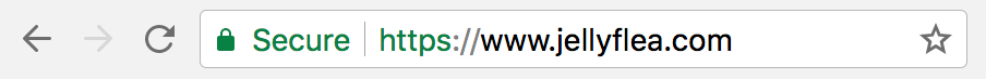 Google Chrome showing this website is secured with an SSL certificate.
