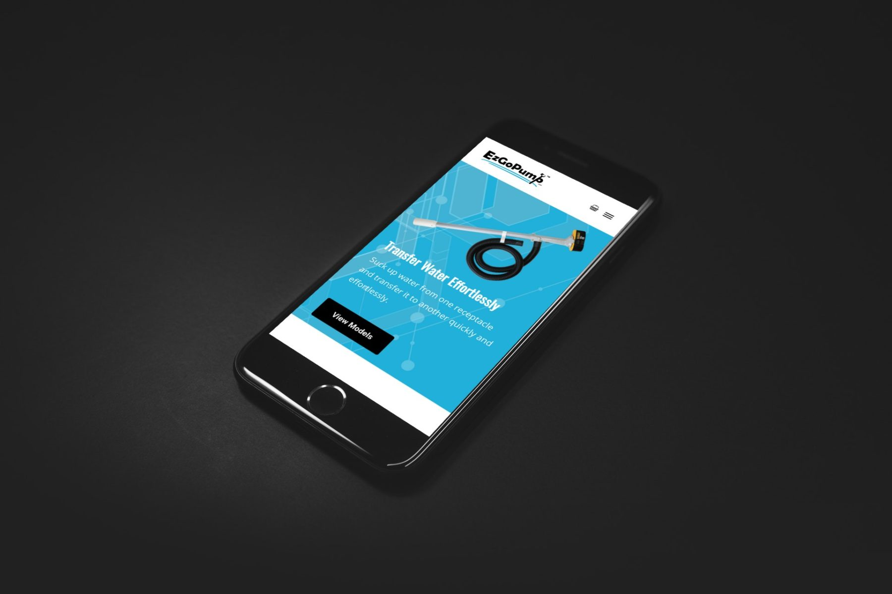 Ezgopump Website Design Mobile